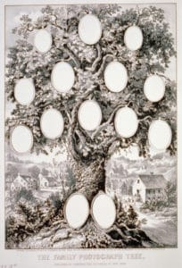 A nineteenth century photo tree chart. Library of Congress